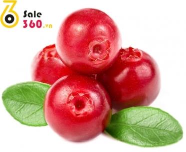 cranberries-1385714223
